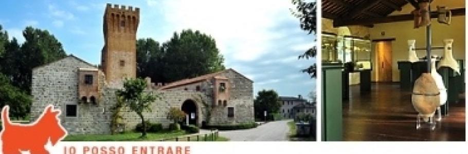 foto castello di san martino